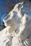 Marble lion Stock Photography