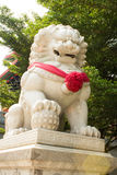 The marble lion. Infront the temple Chinese style of Thailand Royalty Free Stock Photos
