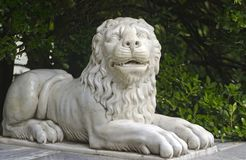 Marble lion. In city park Stock Image