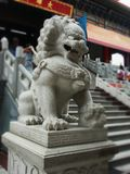 Marble Lion guardian at Dragon Temple Kammalawat Thailand Stock Photo