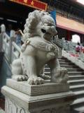 Marble Lion guardian at Dragon Temple Kammalawat Thailand. Marble Lion guardian at Dragon Temple Kammalawat ,  Bangkok, Thailand Stock Photo
