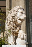 Marble lion Royalty Free Stock Photo