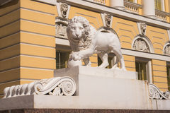 Marble lion. One of the two marble lions (lions Medici) holds up the paw core, near the entrance of the State Russian Museum (Mikhailovsky Palace), Saint Royalty Free Stock Photography