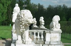 Marble lion and other Royalty Free Stock Images