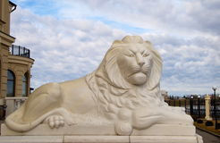 Marble lion Stock Images