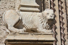 Marble lion statue of Palazzo dei Priori in Perugia. Beautiful marble lion statue of a lion in the medieval center of Perugia in Umbria Royalty Free Stock Photos