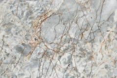 Marble mosaic decor bacground Stock Image