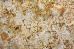 Marble Pattern Formica Royalty Free Stock Image