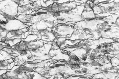 Marble patterned texture background ,Black and white. Stock Photos