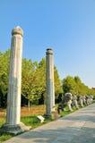 Marble pillar Stock Image
