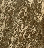 Marble Slab Stone Multi-color Brown Stock Photography