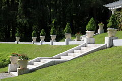 Marble staircase with dwarf trees Stock Image