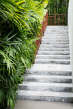 Marble stairs Royalty Free Stock Image