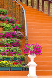 Marble stairs with wooden railing and flowers Royalty Free Stock Image