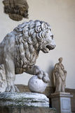 Marble statue of lion, Florence Stock Photos