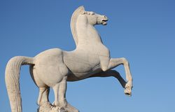 Marble statue of a rampant white horse. Marble statue of a wild rampant white horse on a blue sky background in Rome's EUR area Stock Image