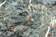 Marble stone polished Royalty Free Stock Images