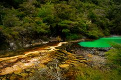 Marble Terrace, Waimangu Volcanic Valley. Rotorua, New Zealand royalty free stock photos