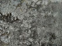 Texture in natural pattern, stone floor. Decorative, gray. royalty free stock image