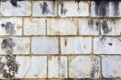 Marble tiles Stock Photo