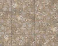 Marble tiles Stock Photos