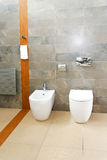 Marble toilet Stock Images