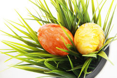Marbled Easter Eggs on green grass Stock Photography