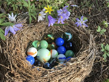 Marbles in a bird`s nest. Still life;Marbles in a bird`s nest Royalty Free Stock Photos