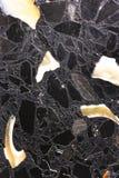 Marbre normal - caspien Photo stock
