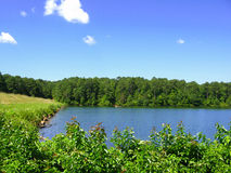 Marbury小河意义重大在堡垒Yargo国家公园 免版税库存照片