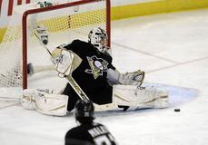 Marc-Andre Fleury Stock Photography