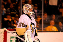 Marc-Andre Fleury Pittsburgh Penguins Lizenzfreie Stockfotos