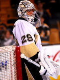 Marc-Andre Fleury Pittsburgh Penguins Stock Photos