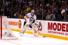 Marc-Andre Fleury Pittsburgh Penguins Stock Photo