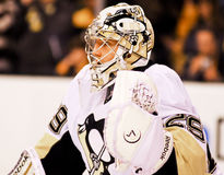Marc-Andre Fleury Pittsburgh Penguins Images stock