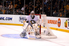 Marc-Andre Fleury Pittsburgh Penguins goalie Royalty Free Stock Photo