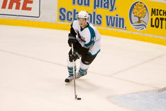 Marc-Edouard Vlasic of the San Jose Sharks Royalty Free Stock Images