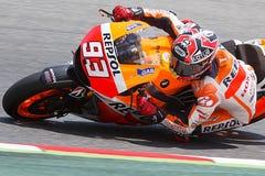 Marc Marquez. MotoGP Stock Image