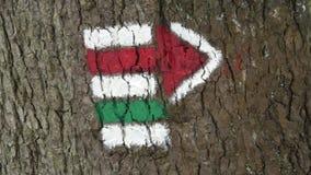 Marcação da rota do turista Sinal do turista na árvore filme
