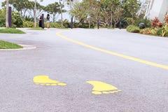 Marcações de estrada no asfalto em um parque bonito Imagens de Stock Royalty Free
