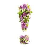 Marca de exclamação das flores e dos lilás naturais do prado em um whi imagens de stock