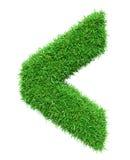 Marca de verificação da grama verde Imagem de Stock Royalty Free