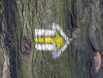 Marca direccional en árbol imagen de archivo