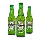 Marca globale della birra di Heineken fotografia stock libera da diritti