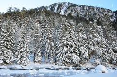 Marcadau valley in winter Royalty Free Stock Photo
