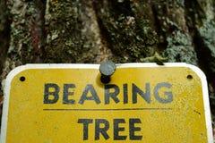 Marcador da árvore de rolamento da avaliação da terra Fotos de Stock