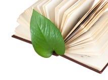 Marcador verde da folha em um livro foto de stock