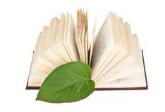 Marcador verde da folha em um livro fotos de stock royalty free