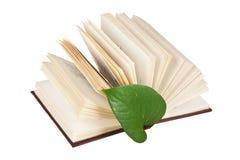 Marcador verde da folha em um livro imagens de stock