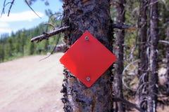 Marcador vermelho do triângulo em fugas da árvore fotos de stock